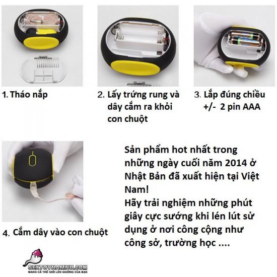 Hướng dẫn sử dụng trứng rung ngụy trang Luoge 01